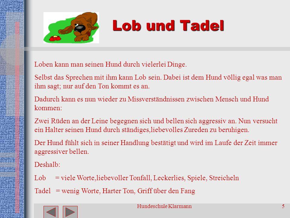 Hundeschule Klarmann5 Lob und Tadel Loben kann man seinen Hund durch vielerlei Dinge.