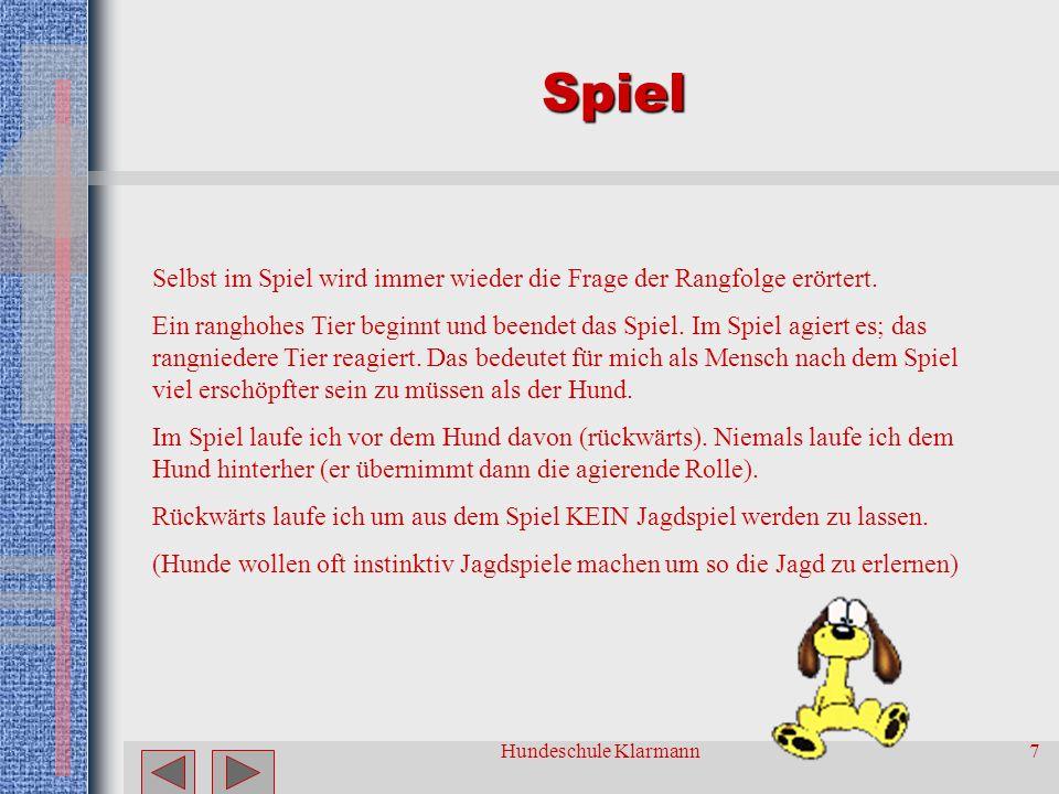 Hundeschule Klarmann7 Spiel Selbst im Spiel wird immer wieder die Frage der Rangfolge erörtert.