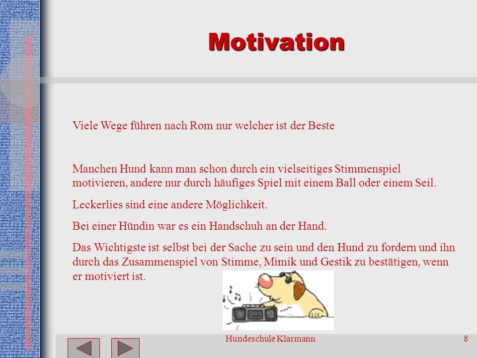 Hundeschule Klarmann8 Motivation Viele Wege führen nach Rom nur welcher ist der Beste Manchen Hund kann man schon durch ein vielseitiges Stimmenspiel motivieren, andere nur durch häufiges Spiel mit einem Ball oder einem Seil.