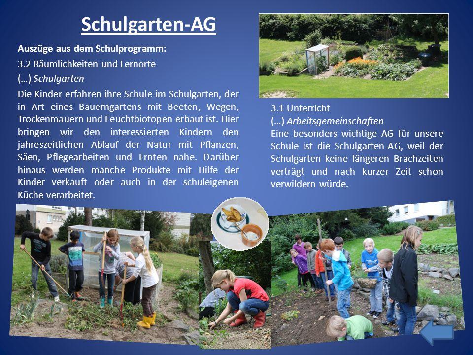 Schulgarten-AG Auszüge aus dem Schulprogramm: 3.2 Räumlichkeiten und Lernorte (…) Schulgarten Die Kinder erfahren ihre Schule im Schulgarten, der in A