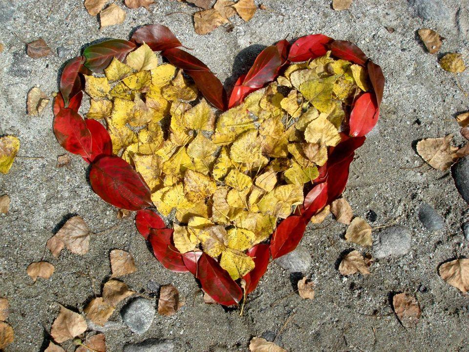 Alle sprechen von Liebe und geben diesem Wort so viel Achtung. Aber wie soll Liebe geschehen, wenn man sich selber nicht liebt?
