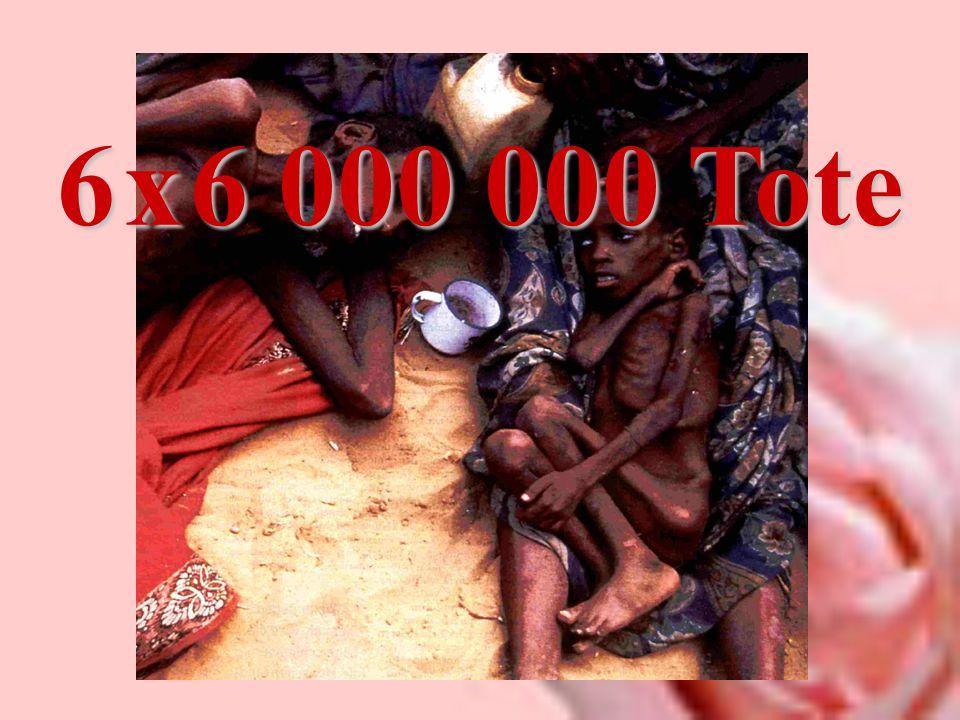 6 x 6 000 000 Tote