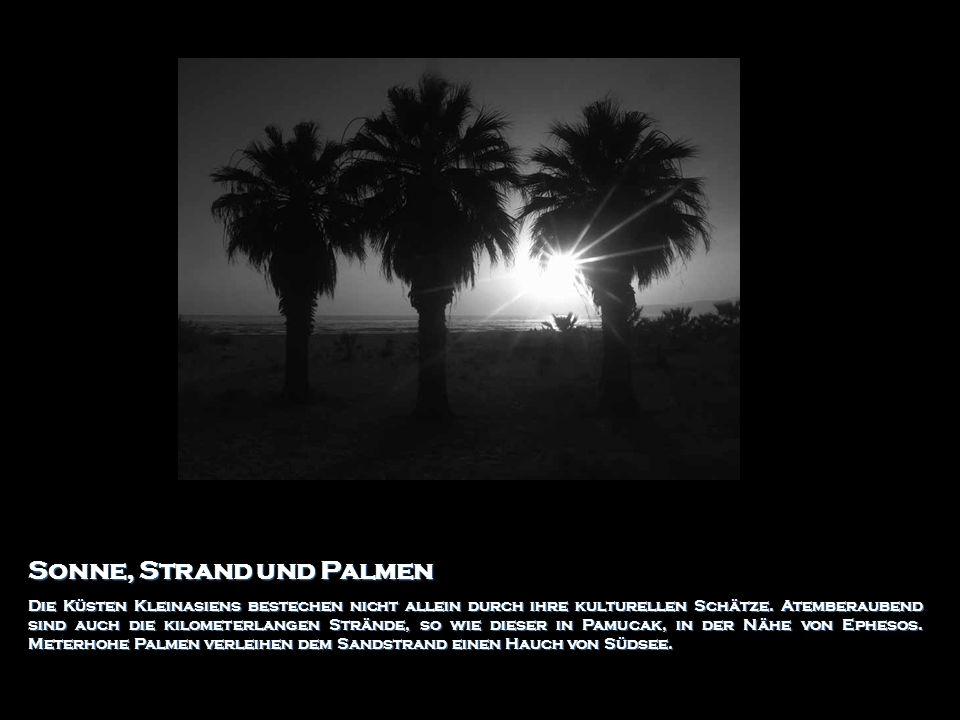Sonne, Strand und Palmen Die Küsten Kleinasiens bestechen nicht allein durch ihre kulturellen Schätze. Atemberaubend sind auch die kilometerlangen Str