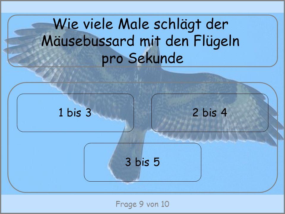 Frage 9 von 10 Wie viele Male schlägt der Mäusebussard mit den Flügeln pro Sekunde 3 bis 5 1 bis 32 bis 4