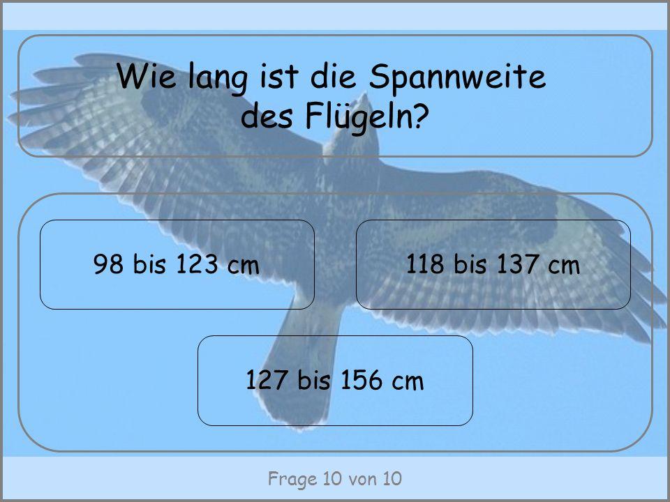Frage 10 von 10 Wie lang ist die Spannweite des Flügeln? 98 bis 123 cm 127 bis 156 cm 118 bis 137 cm
