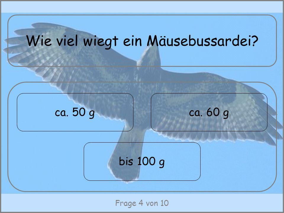 Frage 4 von 10 Wie viel wiegt ein Mäusebussardei? ca. 50 g bis 100 g ca. 60 g