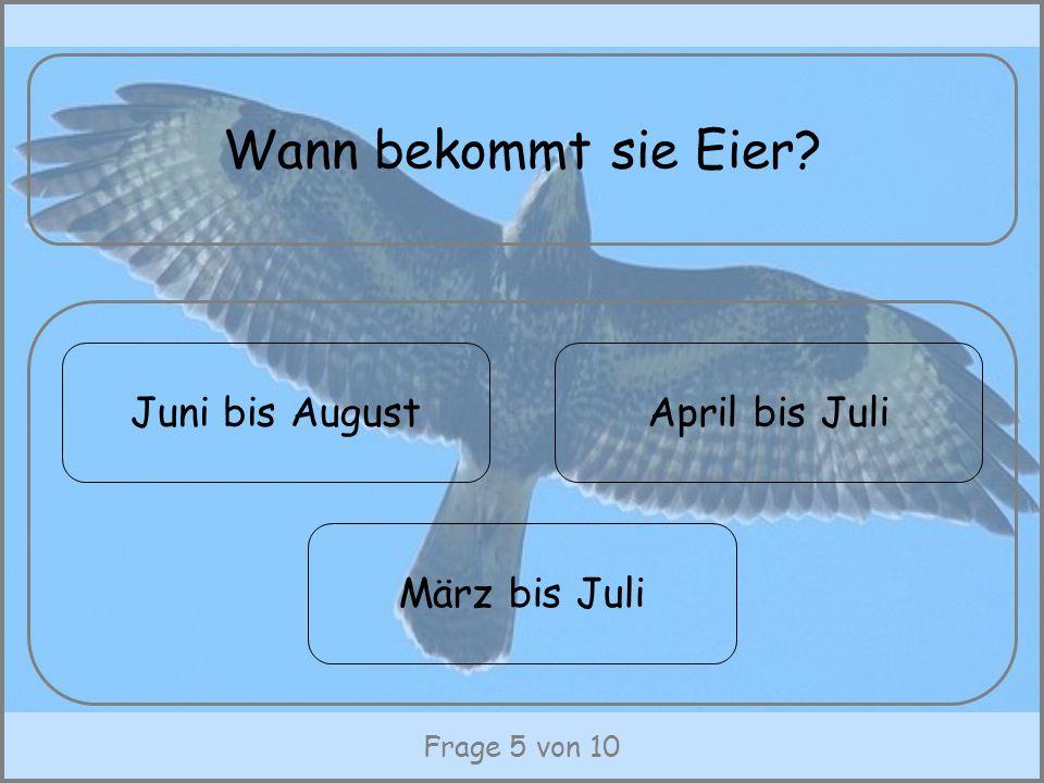 Frage 5 von 10 Wann bekommt sie Eier? Juni bis August März bis Juli April bis Juli