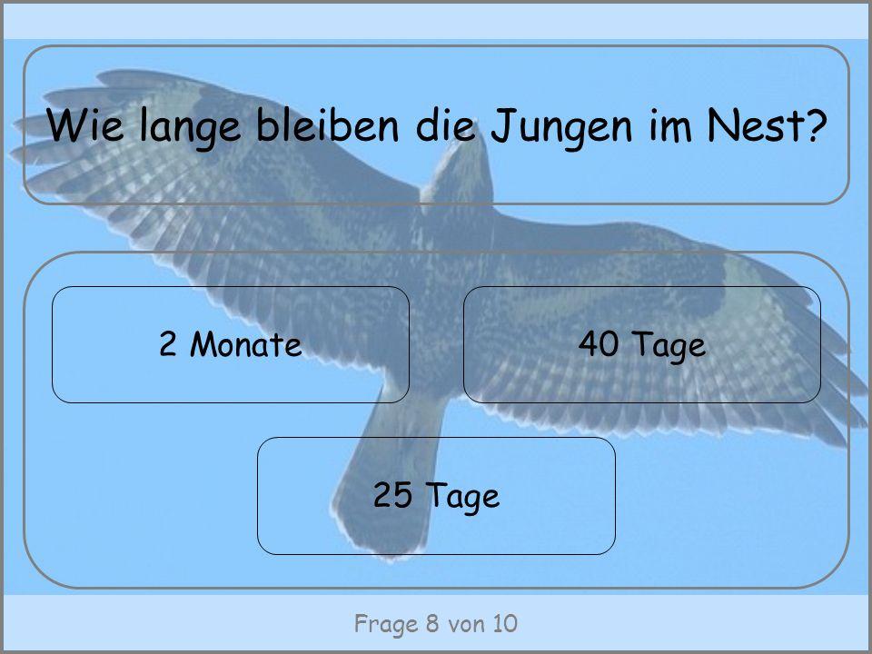 Frage 8 von 10 Wie lange bleiben die Jungen im Nest? 2 Monate40 Tage 25 Tage