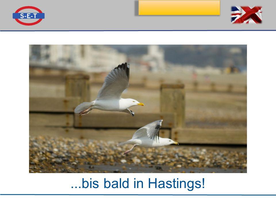 Klassenfahrt nach Hastings...bis bald in Hastings!