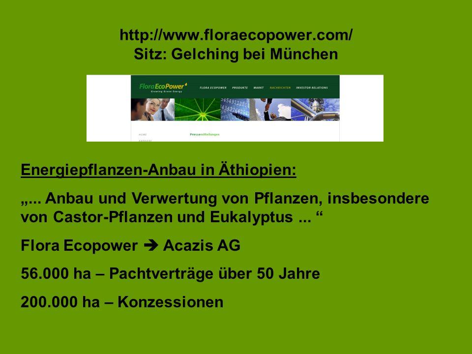 http://www.floraecopower.com/ Sitz: Gelching bei München Energiepflanzen-Anbau in Äthiopien:... Anbau und Verwertung von Pflanzen, insbesondere von Ca