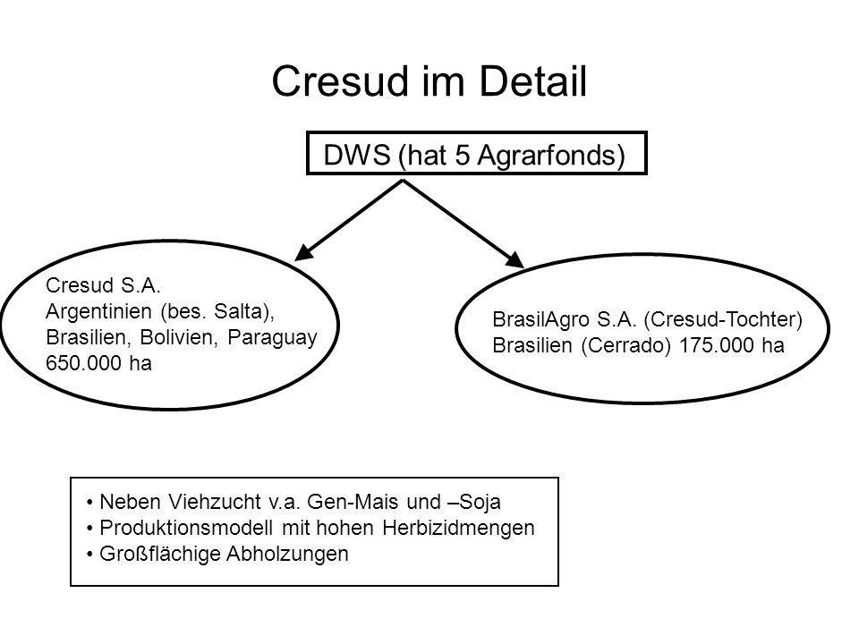 Cresud im Detail DWS (hat 5 Agrarfonds) Cresud S.A. Argentinien (bes. Salta), Brasilien, Bolivien, Paraguay 650.000 ha BrasilAgro S.A. (Cresud-Tochter