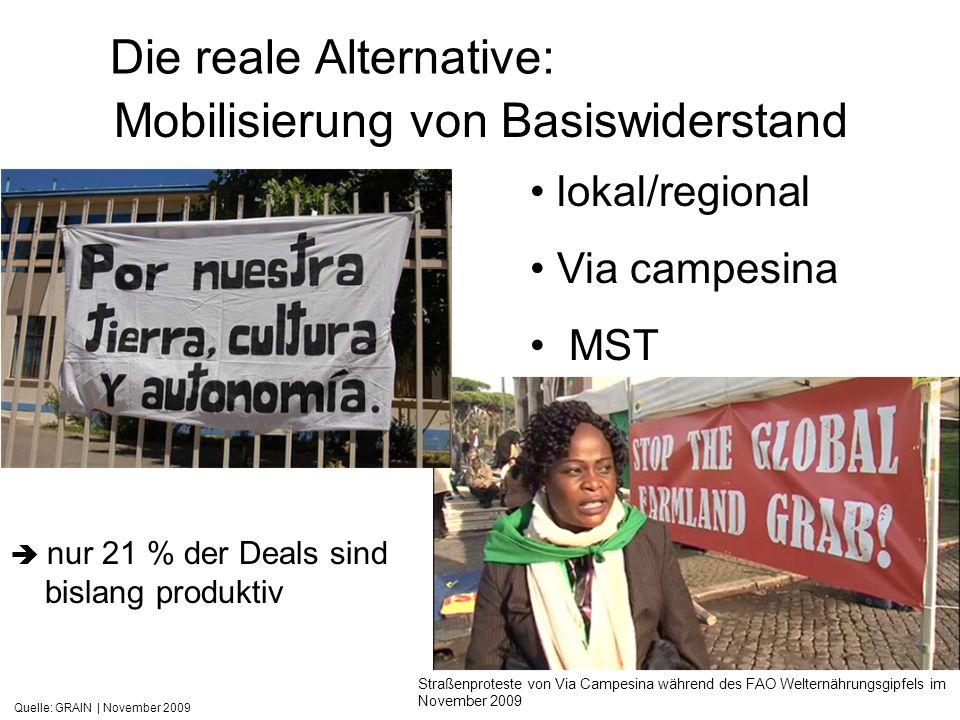 Quelle: GRAIN   November 2009 Die reale Alternative: Straßenproteste von Via Campesina während des FAO Welternährungsgipfels im November 2009 Mobilisi