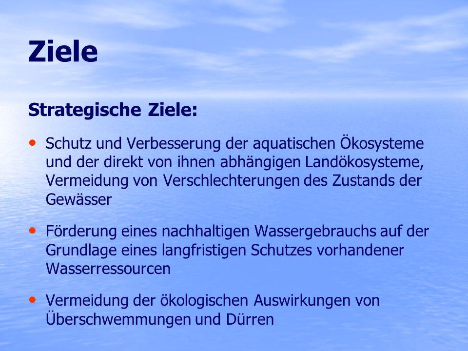 Operative Ziele bis 2015: Erreichen/Erhalten eines guten ökologischen und chemischen Zustands der Oberflächengewässer Bei erheblich veränderten / künstlichen Gewässern: Erreichen eines guten ökologischen Potenzials und eines guten chemischen Zustands Erreichen eines guten quantitativen und chemischen Zustandes des Grundwassers Erfüllung aller Normen und Ziele für Schutzgebiete