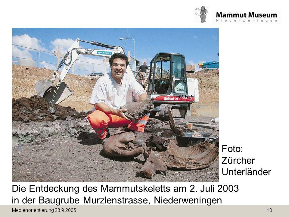Medienorientierung 28.9.2005 10 Die Entdeckung des Mammutskeletts am 2. Juli 2003 in der Baugrube Murzlenstrasse, Niederweningen Foto: Zürcher Unterlä