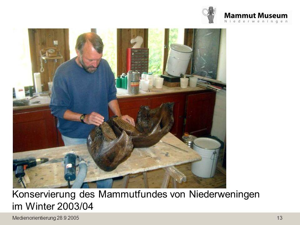 Medienorientierung 28.9.2005 13 Konservierung des Mammutfundes von Niederweningen im Winter 2003/04