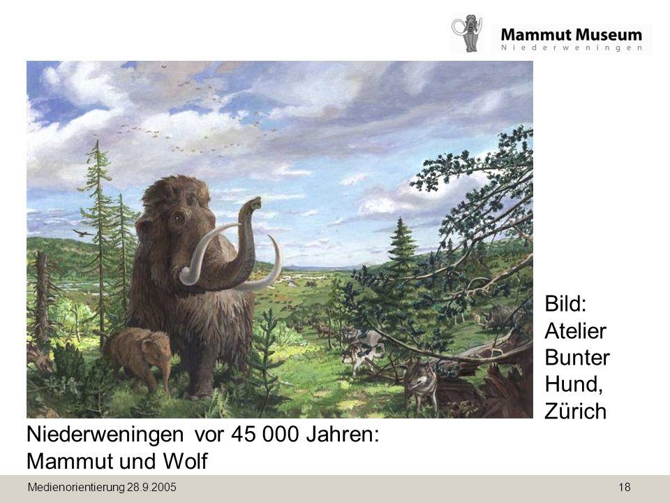 Medienorientierung 28.9.2005 18 Niederweningen vor 45 000 Jahren: Mammut und Wolf Bild: Atelier Bunter Hund, Zürich