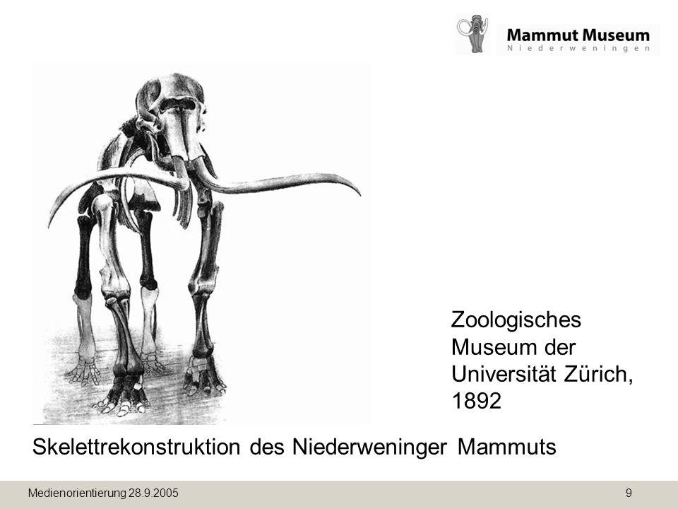 Medienorientierung 28.9.2005 9 Skelettrekonstruktion des Niederweninger Mammuts Zoologisches Museum der Universität Zürich, 1892