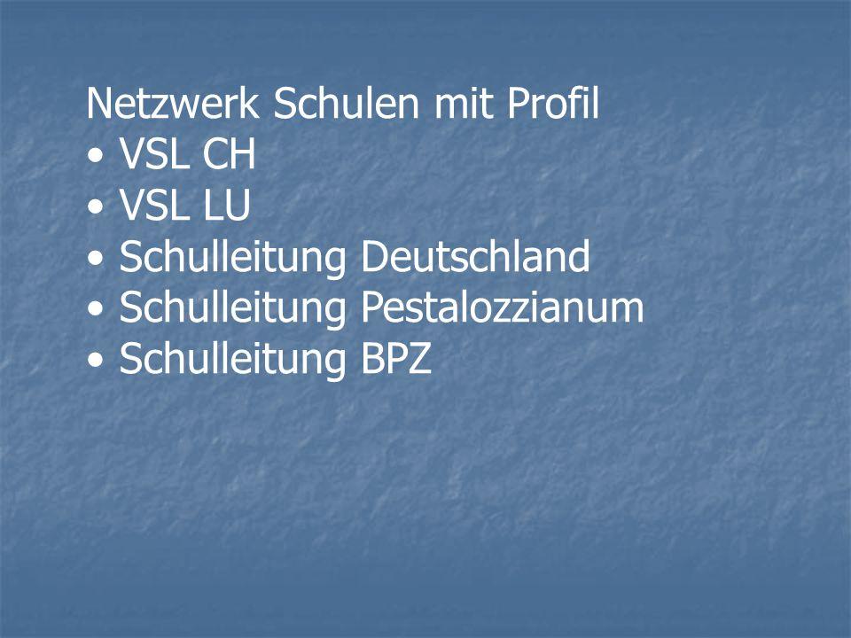 Netzwerk Schulen mit Profil VSL CH VSL LU Schulleitung Deutschland Schulleitung Pestalozzianum Schulleitung BPZ