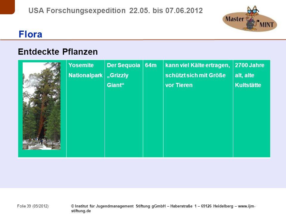 Folie 39 (05/2012) © Institut für Jugendmanagement Stiftung gGmbH – Haberstraße 1 – 69126 Heidelberg – www.ijm- stiftung.de USA Forschungsexpedition 22.05.