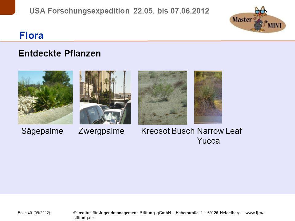 Folie 40 (05/2012) © Institut für Jugendmanagement Stiftung gGmbH – Haberstraße 1 – 69126 Heidelberg – www.ijm- stiftung.de USA Forschungsexpedition 22.05.