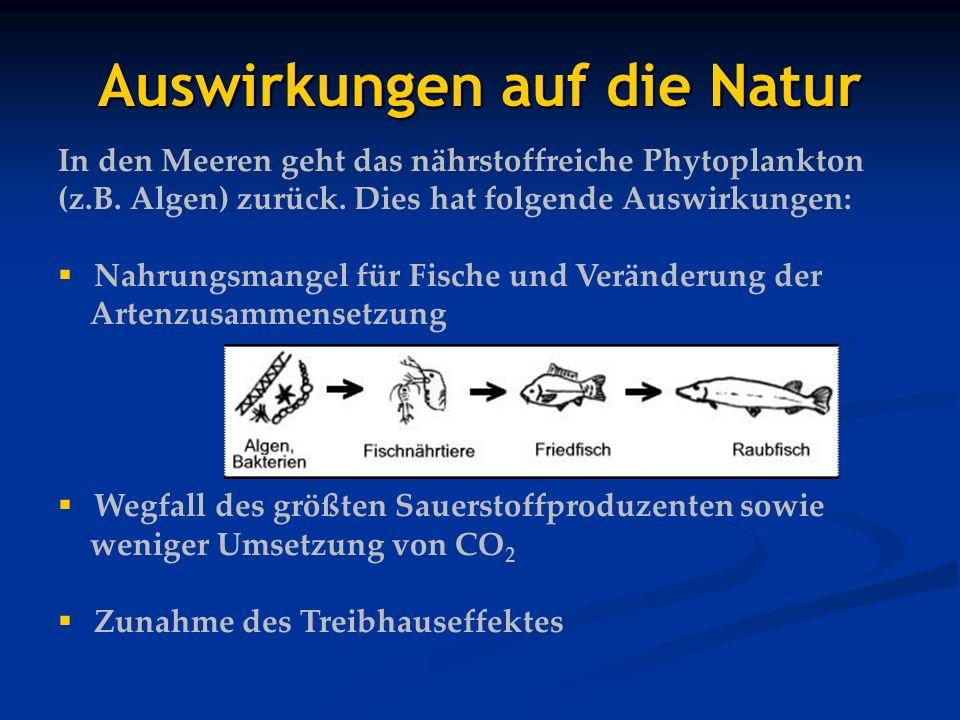 Auswirkungen auf die Natur In den Meeren geht das nährstoffreiche Phytoplankton (z.B. Algen) zurück. Dies hat folgende Auswirkungen: Nahrungsmangel fü
