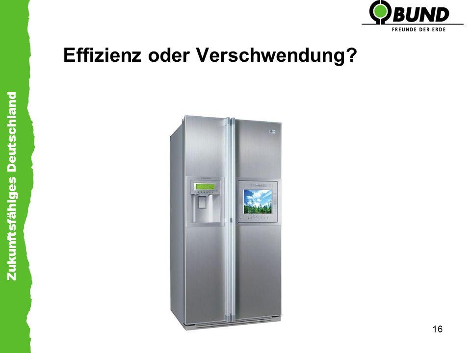 Zukunftsfähiges Deutschland 16 Effizienz oder Verschwendung?