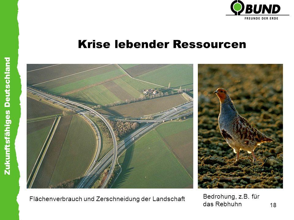 Zukunftsfähiges Deutschland 18 Krise lebender Ressourcen Flächenverbrauch und Zerschneidung der Landschaft Bedrohung, z.B. für das Rebhuhn