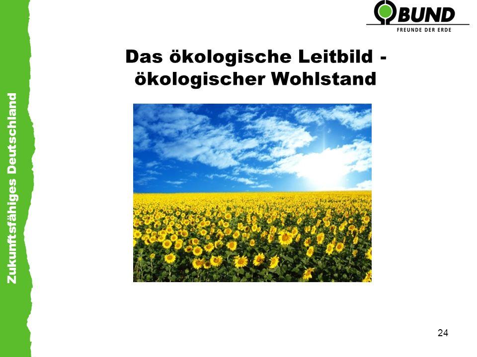 Zukunftsfähiges Deutschland 24 Das ökologische Leitbild - ökologischer Wohlstand