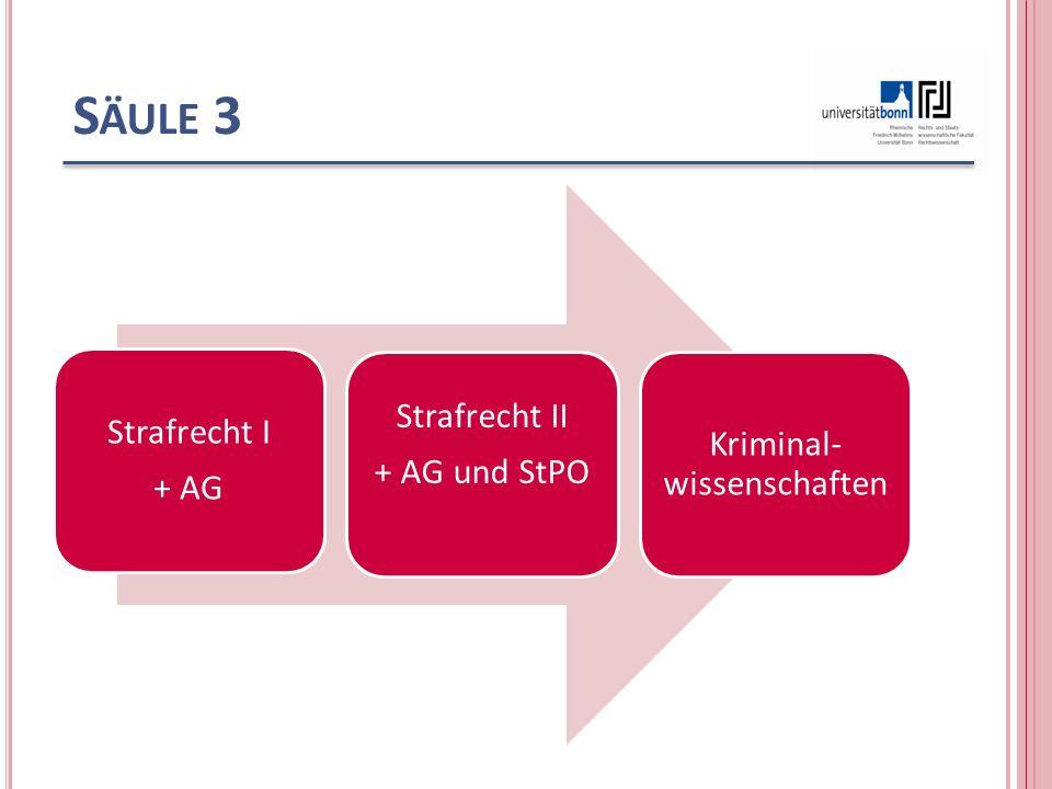 S ÄULE 3 Strafrecht I + AG Strafrecht II + AG und StPO Kriminal- wissenschaften
