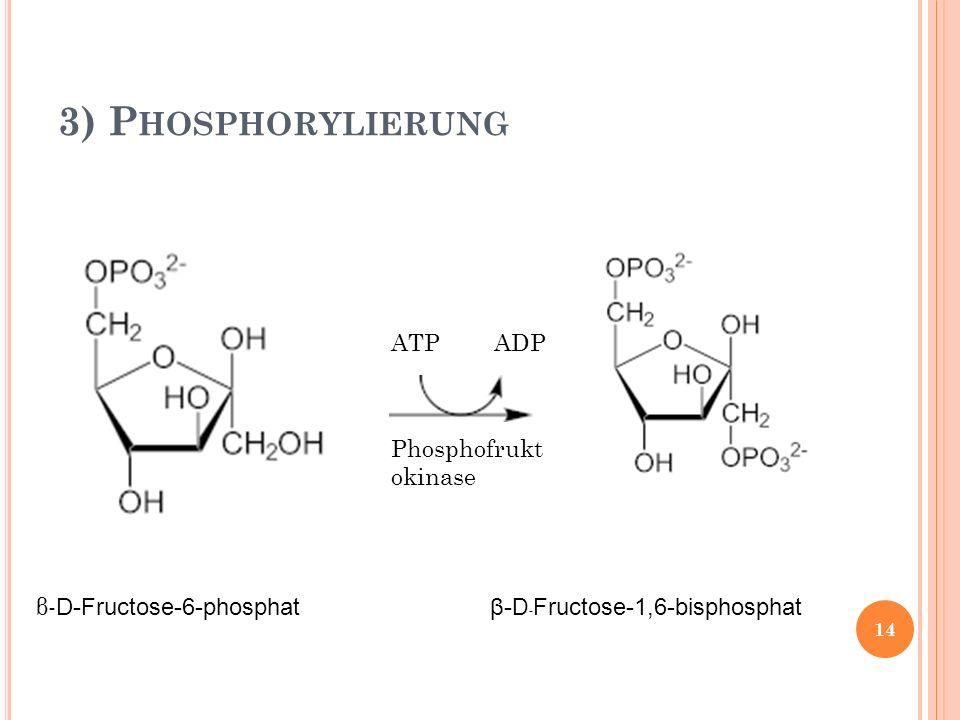 3) P HOSPHORYLIERUNG ATP ADP β- D-Fructose-6-phosphat β- D - Fructose-1,6-bisphosphat Phosphofrukt okinase 14