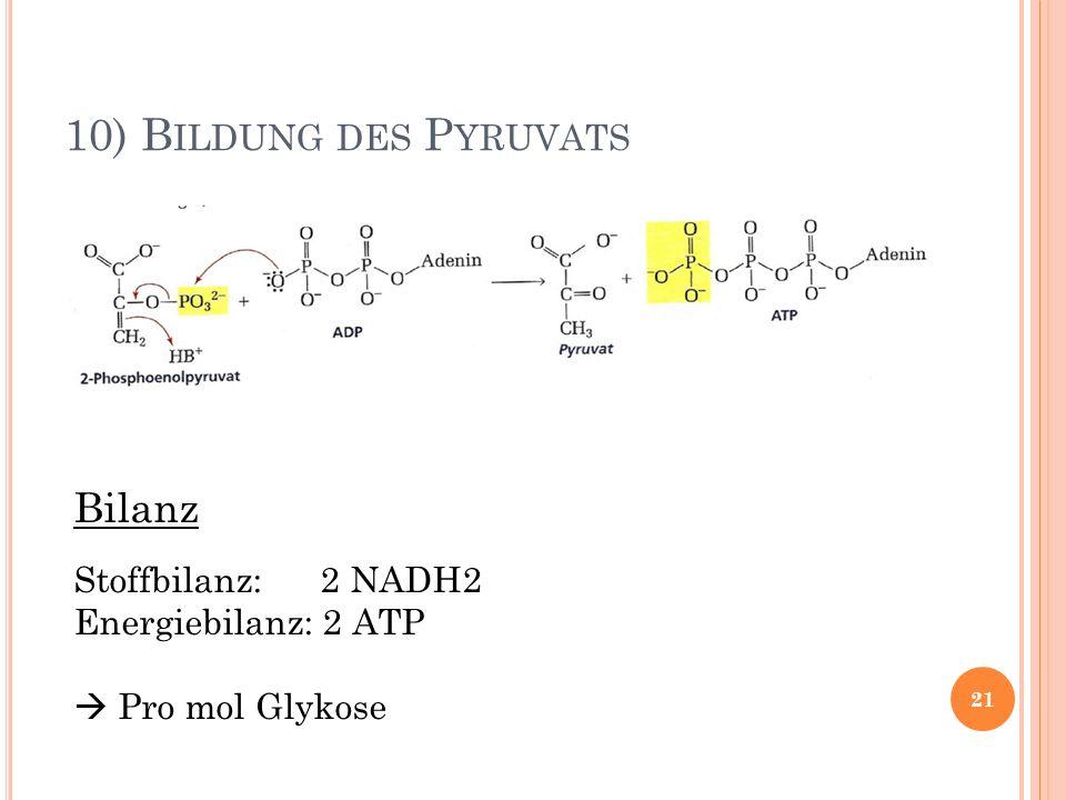 10) B ILDUNG DES P YRUVATS Bilanz Stoffbilanz: 2 NADH2 Energiebilanz: 2 ATP Pro mol Glykose 21