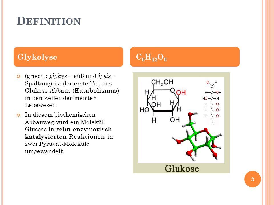 G LYKOLYSE Der Abbau von Glucose bis zu Pyruvat läuft sowohl unter Sauerstoffmangelbedingungen (anerob) als auch bei ausreichendem Sauerstoffangebot (aerob) ab Ort: Cytoplamsa der Zelle (D) 4