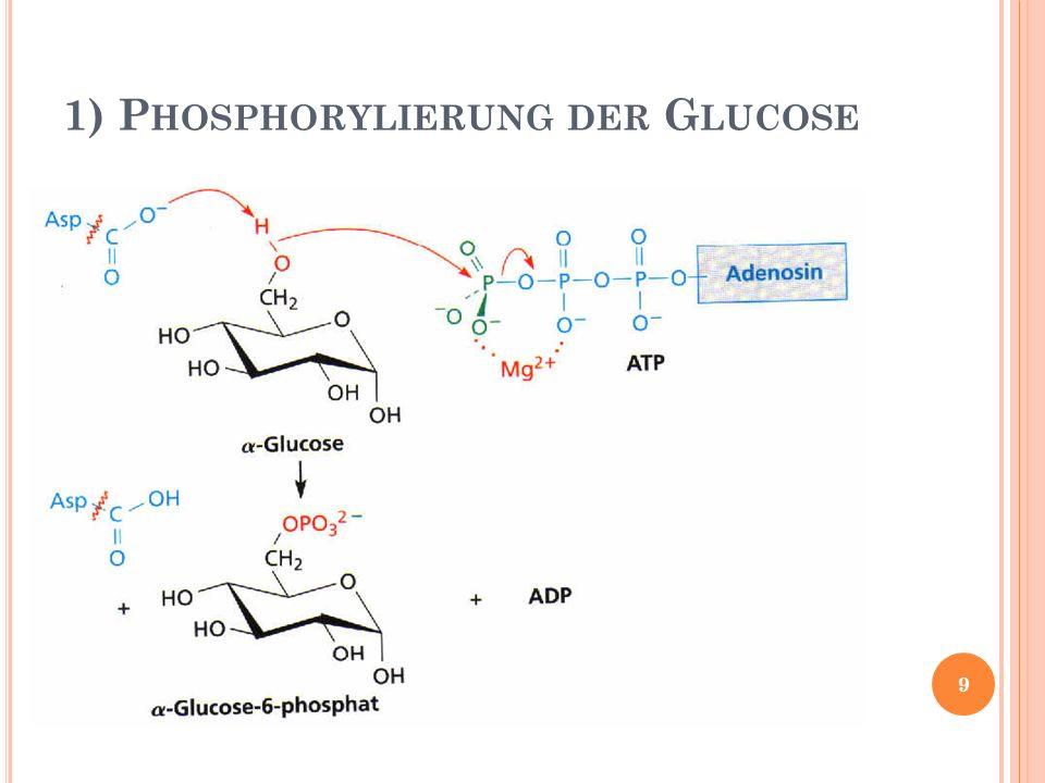 8) I SOMERISIERUNG 9) Dehydratisierung (E2- Eliminierung) 20