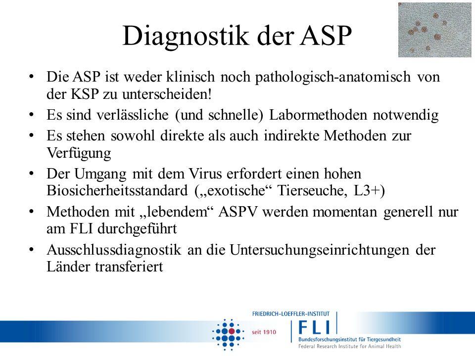Diagnostik der ASP Die ASP ist weder klinisch noch pathologisch-anatomisch von der KSP zu unterscheiden! Es sind verlässliche (und schnelle) Labormeth