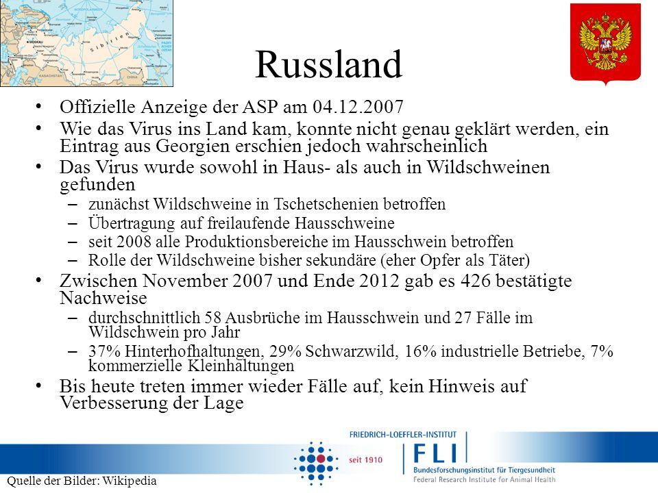Russland Offizielle Anzeige der ASP am 04.12.2007 Wie das Virus ins Land kam, konnte nicht genau geklärt werden, ein Eintrag aus Georgien erschien jed