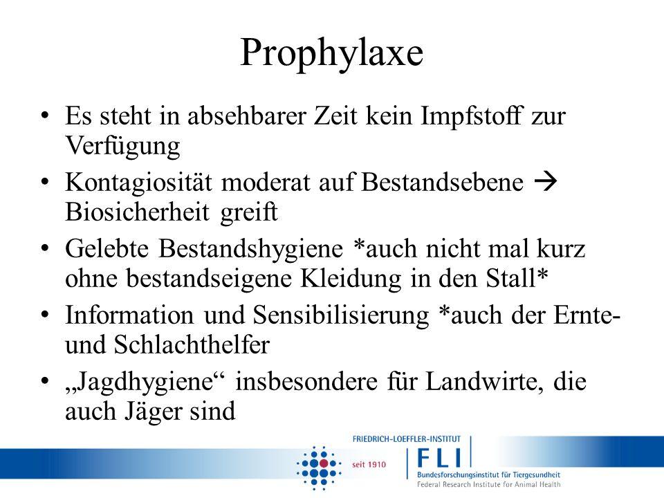 Prophylaxe Es steht in absehbarer Zeit kein Impfstoff zur Verfügung Kontagiosität moderat auf Bestandsebene Biosicherheit greift Gelebte Bestandshygie