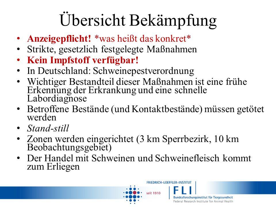 Übersicht Bekämpfung Anzeigepflicht! *was heißt das konkret* Strikte, gesetzlich festgelegte Maßnahmen Kein Impfstoff verfügbar! In Deutschland: Schwe