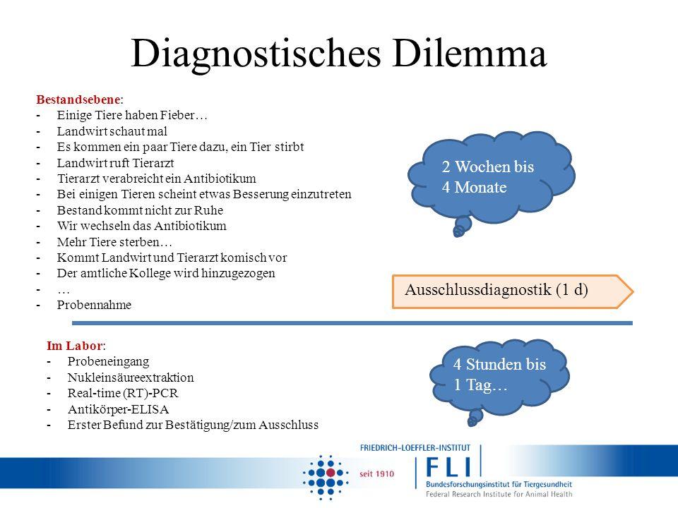 Diagnostisches Dilemma Bestandsebene: -Einige Tiere haben Fieber… -Landwirt schaut mal -Es kommen ein paar Tiere dazu, ein Tier stirbt -Landwirt ruft
