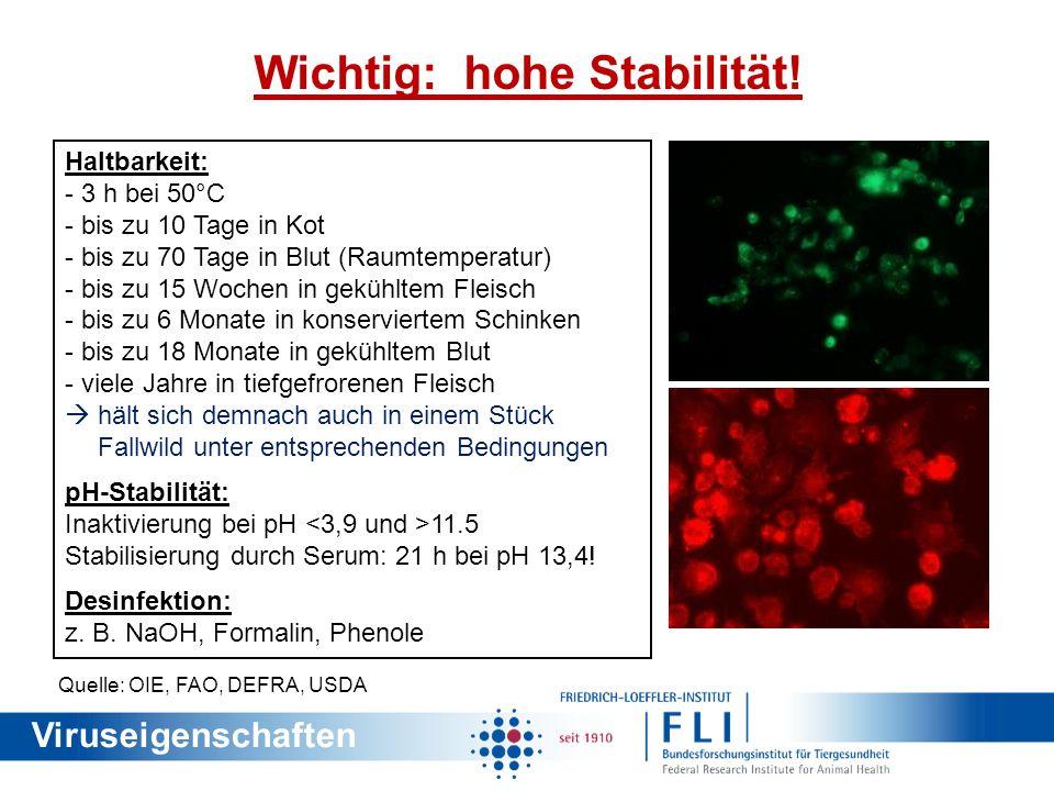 Ätiologie (5) Wichtig: hohe Stabilität! Haltbarkeit: - 3 h bei 50°C - bis zu 10 Tage in Kot - bis zu 70 Tage in Blut (Raumtemperatur) - bis zu 15 Woch