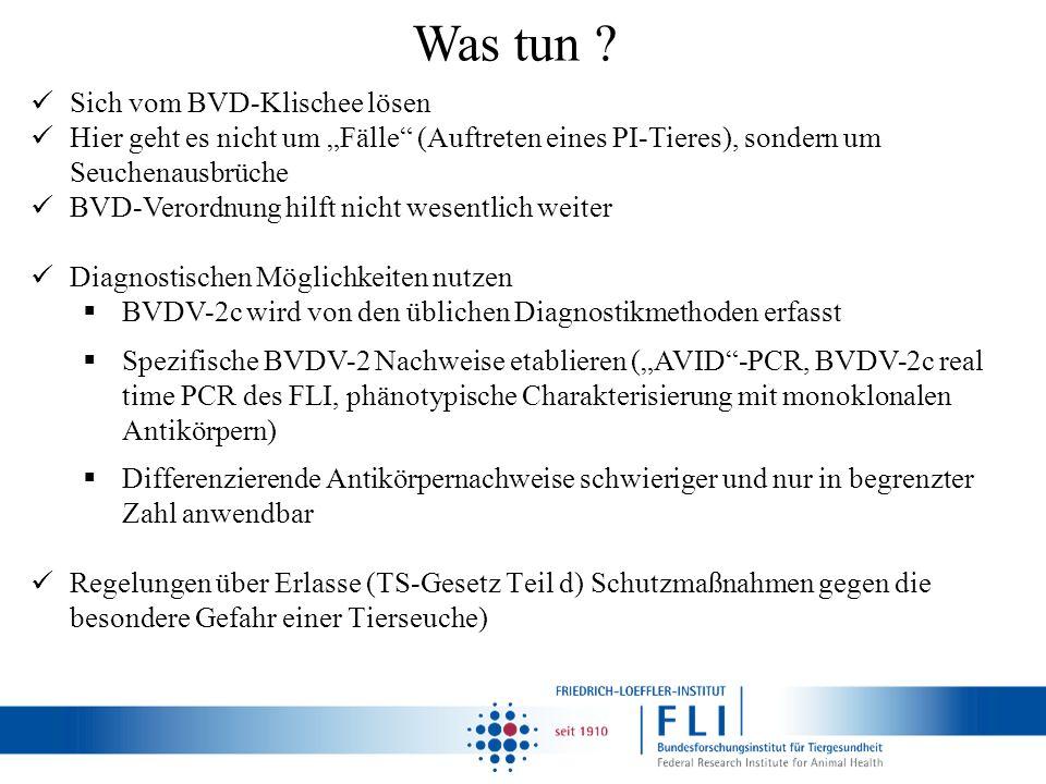 Was tun ? Sich vom BVD-Klischee lösen Hier geht es nicht um Fälle (Auftreten eines PI-Tieres), sondern um Seuchenausbrüche BVD-Verordnung hilft nicht