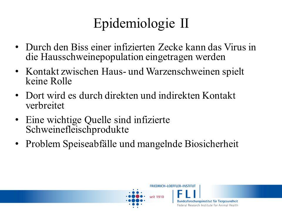 Epidemiologie II Durch den Biss einer infizierten Zecke kann das Virus in die Hausschweinepopulation eingetragen werden Kontakt zwischen Haus- und War