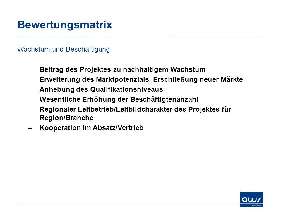 Bewertungsmatrix Wachstum und Beschäftigung –Beitrag des Projektes zu nachhaltigem Wachstum –Erweiterung des Marktpotenzials, Erschließung neuer Märkt