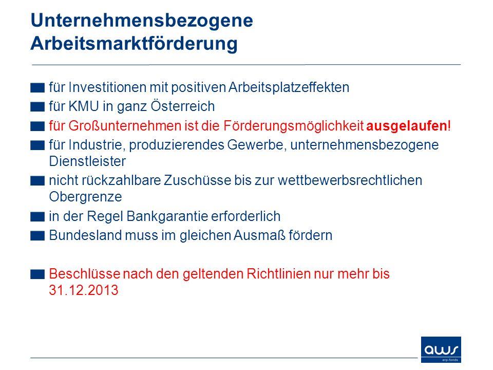 Unternehmensbezogene Arbeitsmarktförderung für Investitionen mit positiven Arbeitsplatzeffekten für KMU in ganz Österreich für Großunternehmen ist die