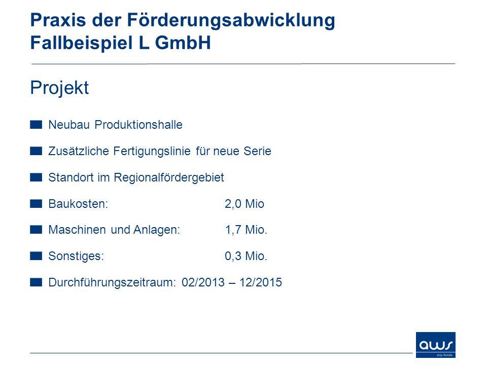 Praxis der Förderungsabwicklung Fallbeispiel L GmbH Projekt Neubau Produktionshalle Zusätzliche Fertigungslinie für neue Serie Standort im Regionalför