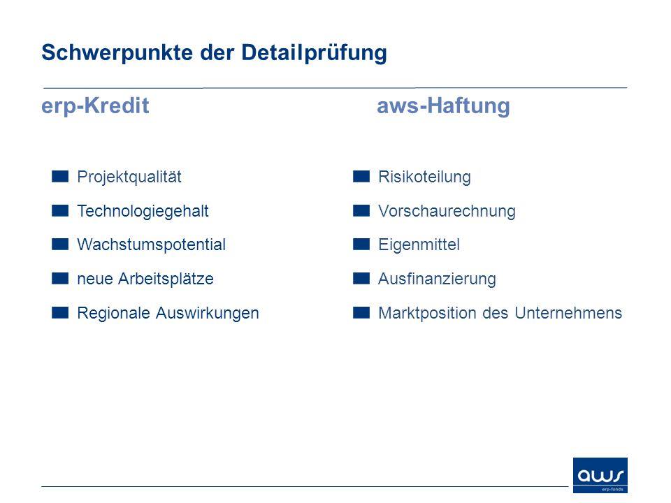 Schwerpunkte der Detailprüfung erp-Kreditaws-Haftung Projektqualität Technologiegehalt Wachstumspotential neue Arbeitsplätze Regionale Auswirkungen Ri