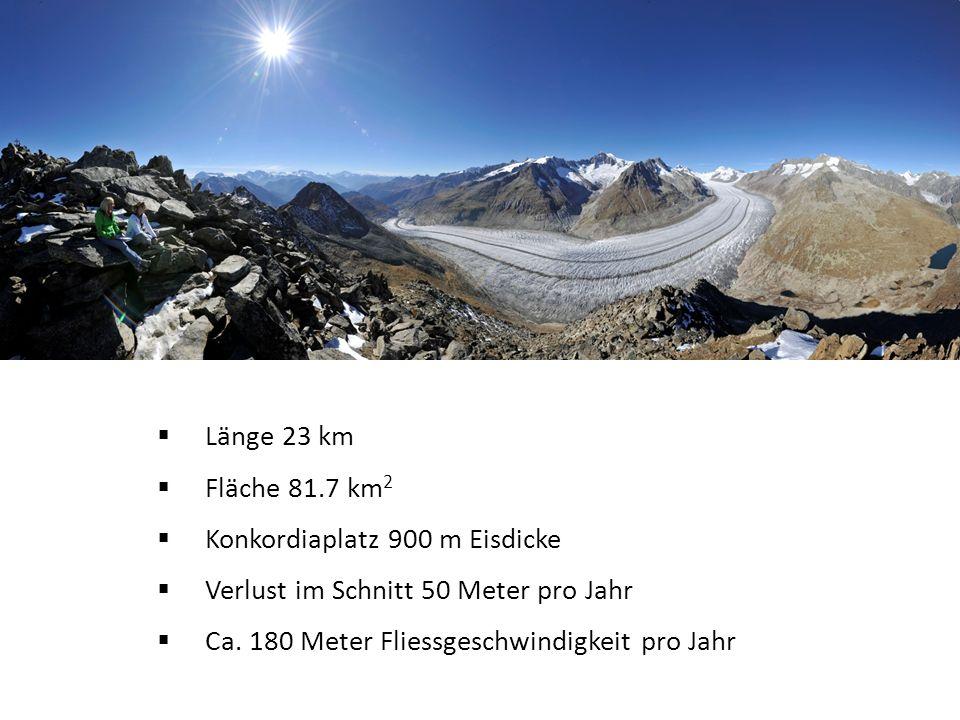 Länge 23 km Fläche 81.7 km 2 Konkordiaplatz 900 m Eisdicke Verlust im Schnitt 50 Meter pro Jahr Ca.