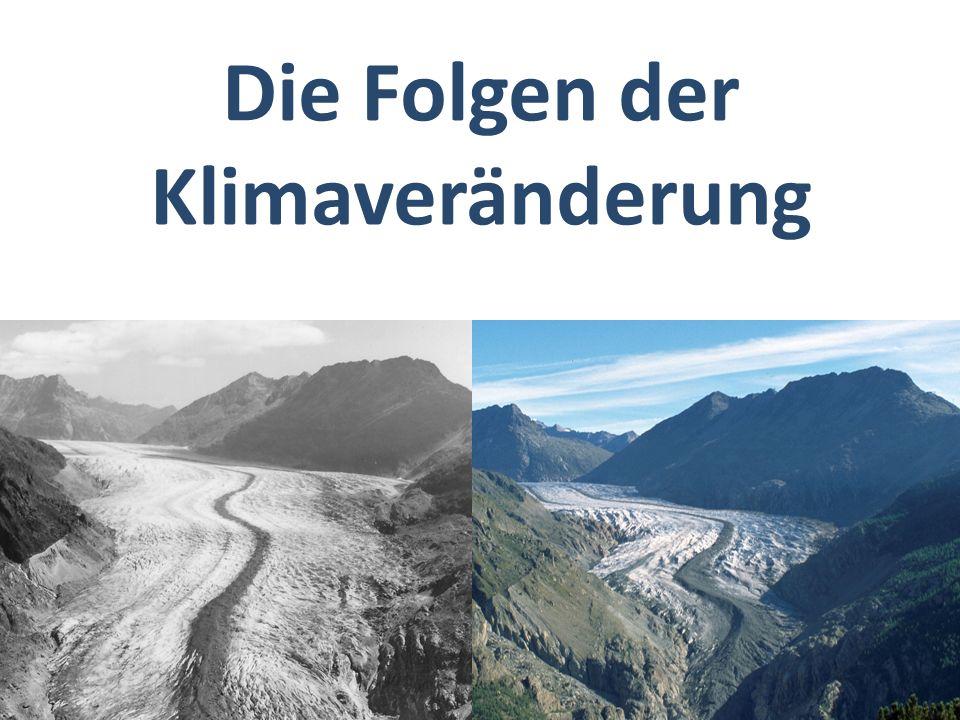 Die Folgen der Klimaveränderung