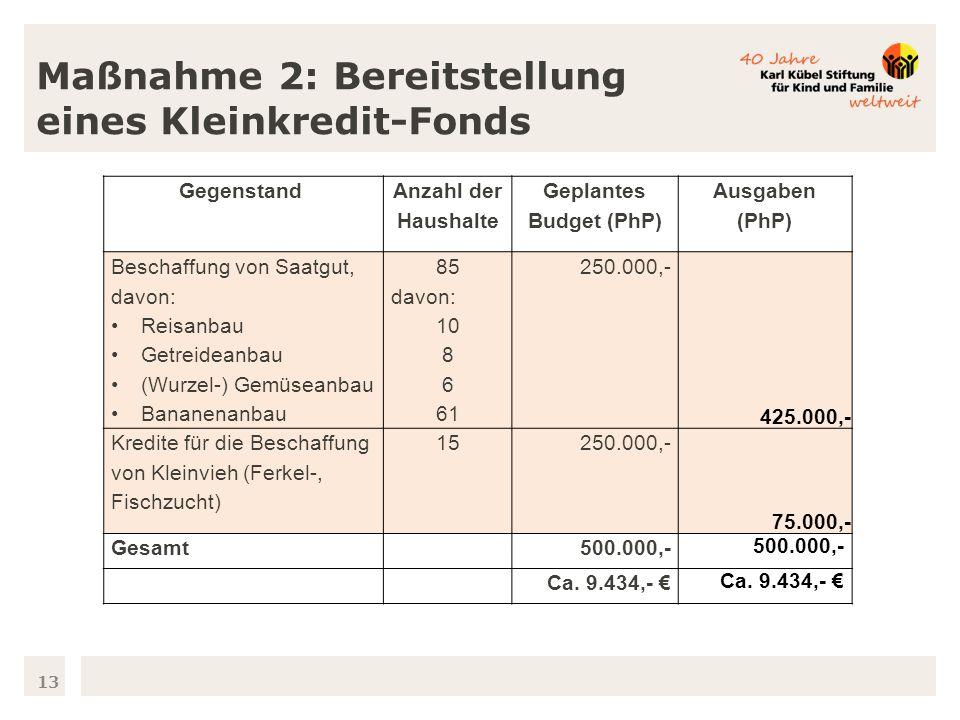 13 Maßnahme 2: Bereitstellung eines Kleinkredit-Fonds Gegenstand Anzahl der Haushalte Geplantes Budget (PhP) Ausgaben (PhP) Beschaffung von Saatgut, davon: Reisanbau Getreideanbau (Wurzel-) Gemüseanbau Bananenanbau 85 davon: 10 8 6 61 250.000,- 425.000,- Kredite für die Beschaffung von Kleinvieh (Ferkel-, Fischzucht) 15250.000,- 75.000,- Gesamt 500.000,- Ca.