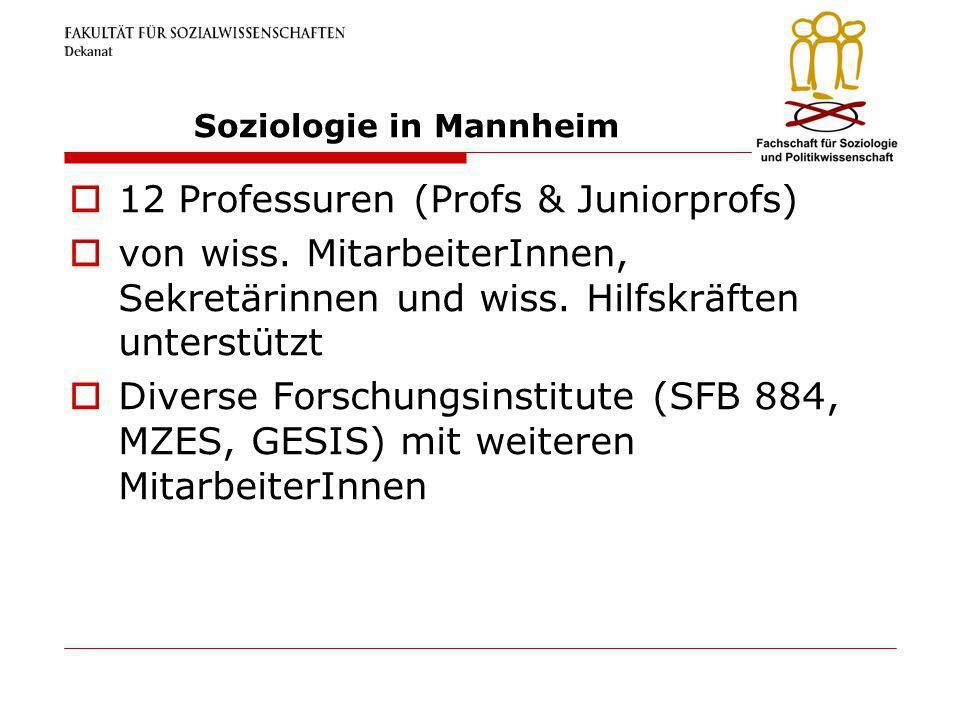 Soziologie in Mannheim 12 Professuren (Profs & Juniorprofs) von wiss. MitarbeiterInnen, Sekretärinnen und wiss. Hilfskräften unterstützt Diverse Forsc