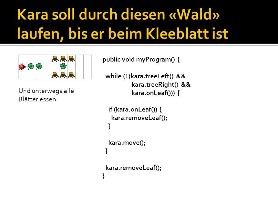 public void myProgram() { int i = 0; while (i < 5) { kara.putLeaf(); kara.move(); i++; }